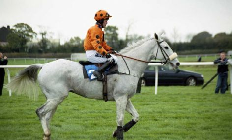 Racehorse Grey Abbey with Jockey Graham Lee